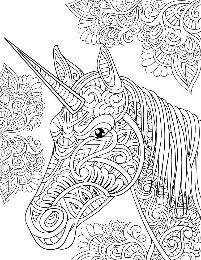 Amazon.com: Unicorn Coloring Book (Adult Coloring Gift): A Unicorn ...
