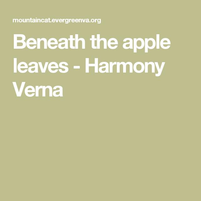Beneath the apple leaves  - Harmony Verna