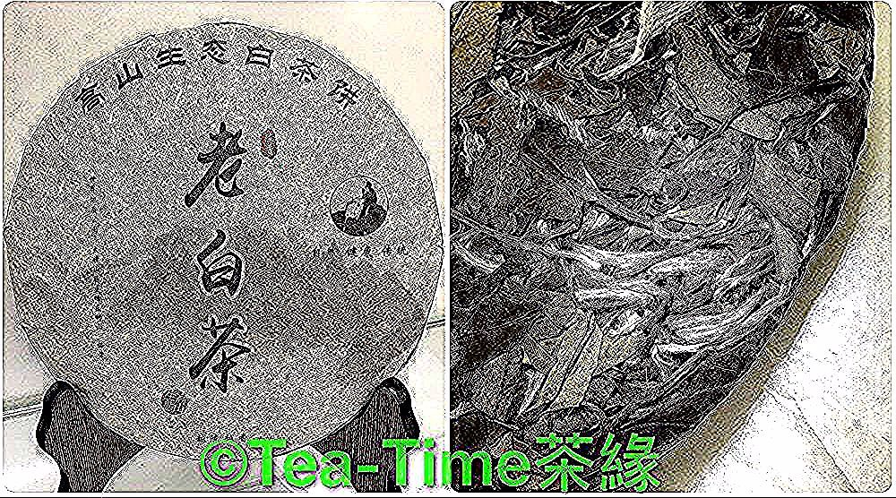 2015年老白茶 白茶茶餅 高山生態白茶餅 白茶 350克 餅 選用 柘榮高山生態曬青大白茶 福鼎大白茶茶種 來自世界地質 公園 太姥山脈主峰