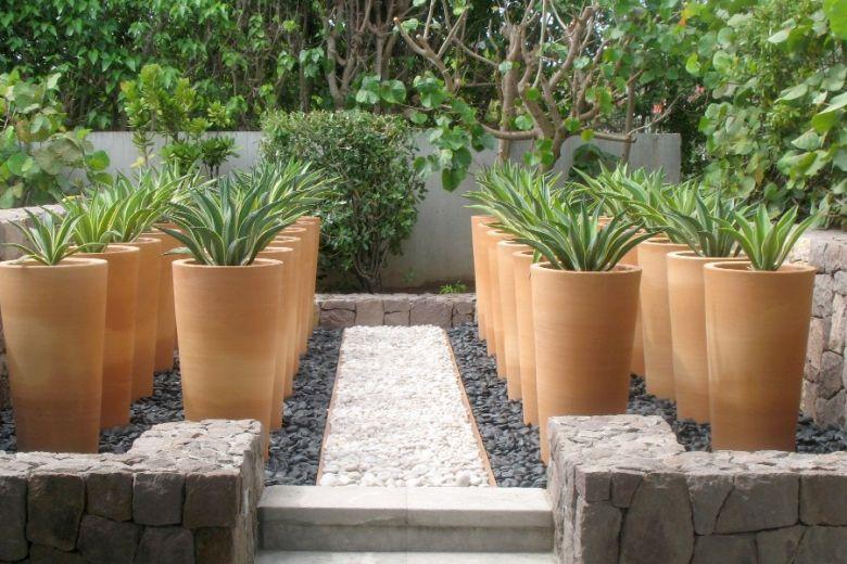 Galerie Photos Pots En Terre Cuite Des Collections Ravel Idee Deco Jardin Deco Jardin Jardins