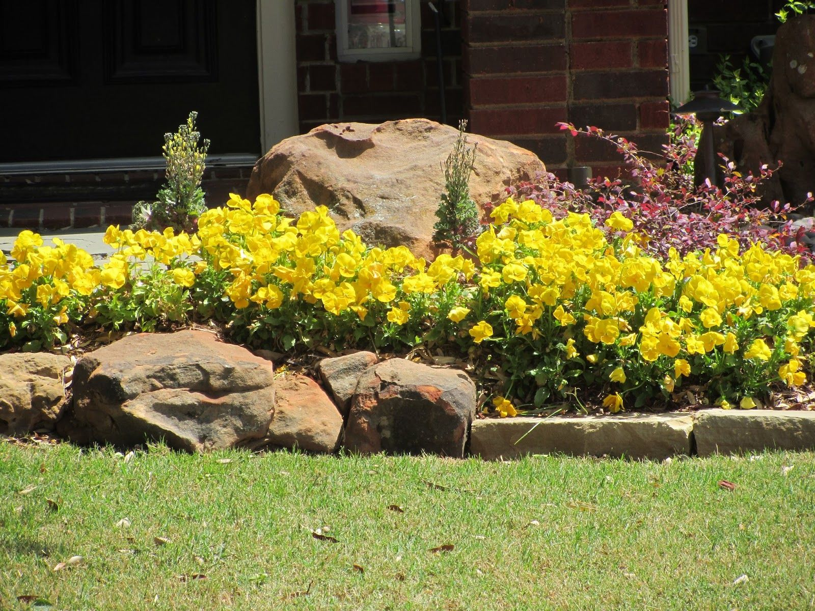 The lovely flower beds in this housing area also have rocks mixed in ...