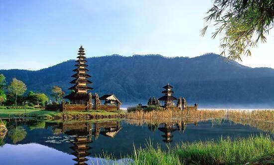 Jasa SEO Murah Bali