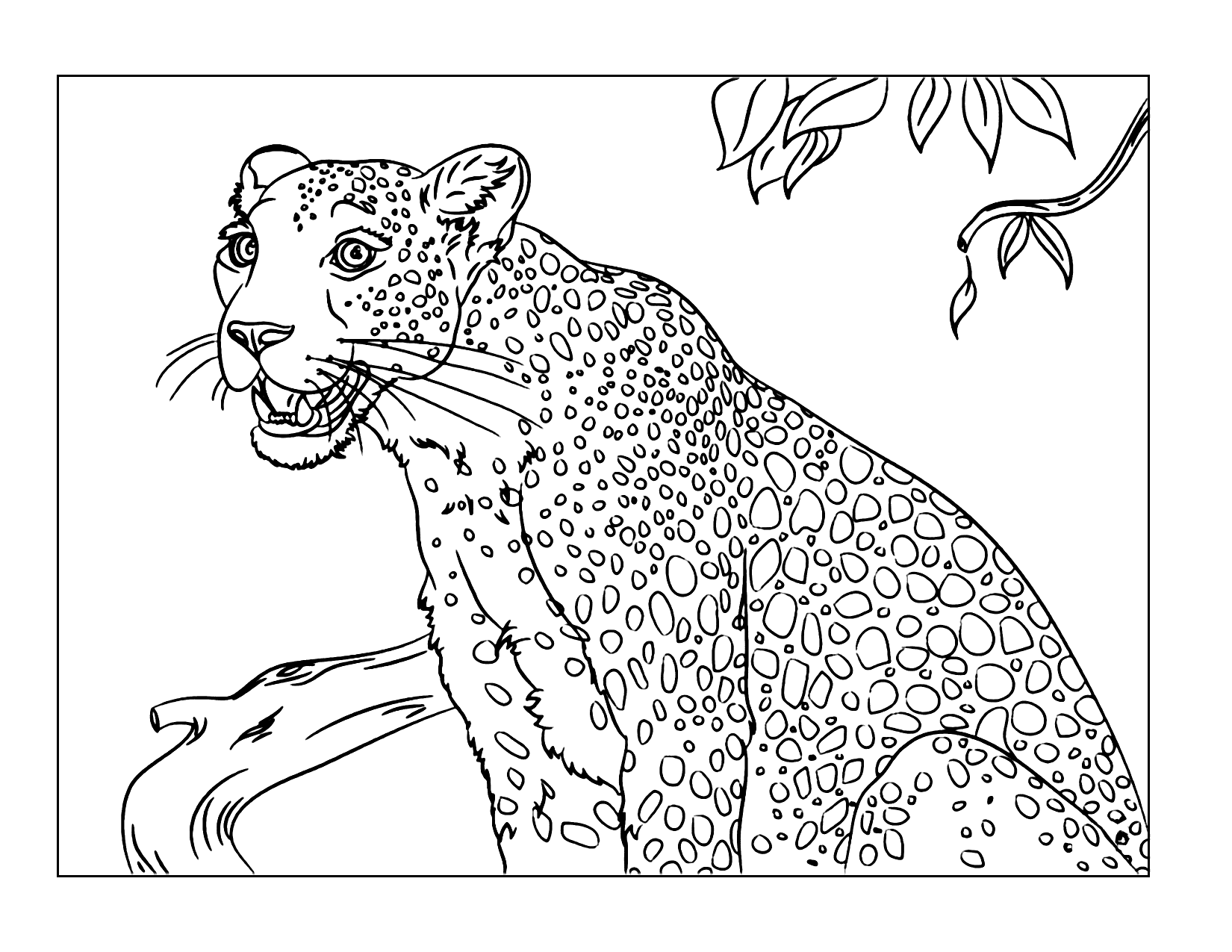 Leopard Coloring Pages - coloring.rocks! in 2020   Cat ...