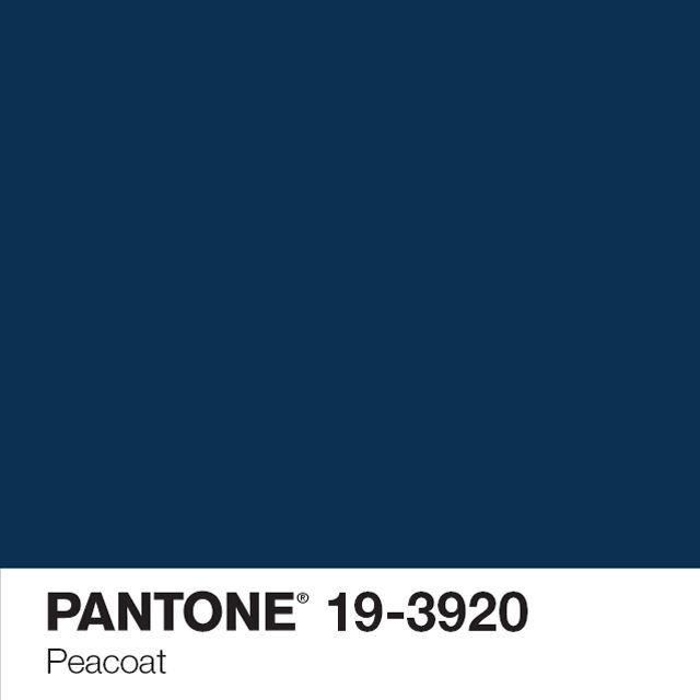 Winter Blue Color Palette: Pantone Marine Blue Color