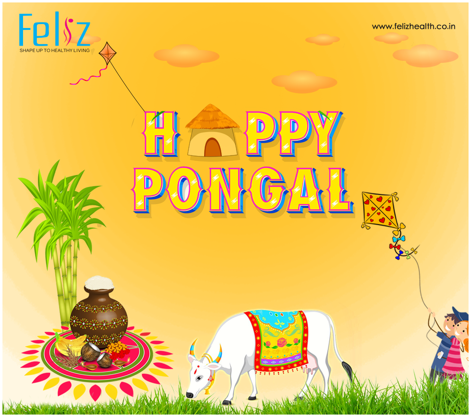 This festive season find your wings and conquer new heights.Wishing you and your family a Happy Pongal. Team www.felizhealthcare.co.in    #HappyPongal   #makarasakranthi #2017 #feliz #Hyderabad