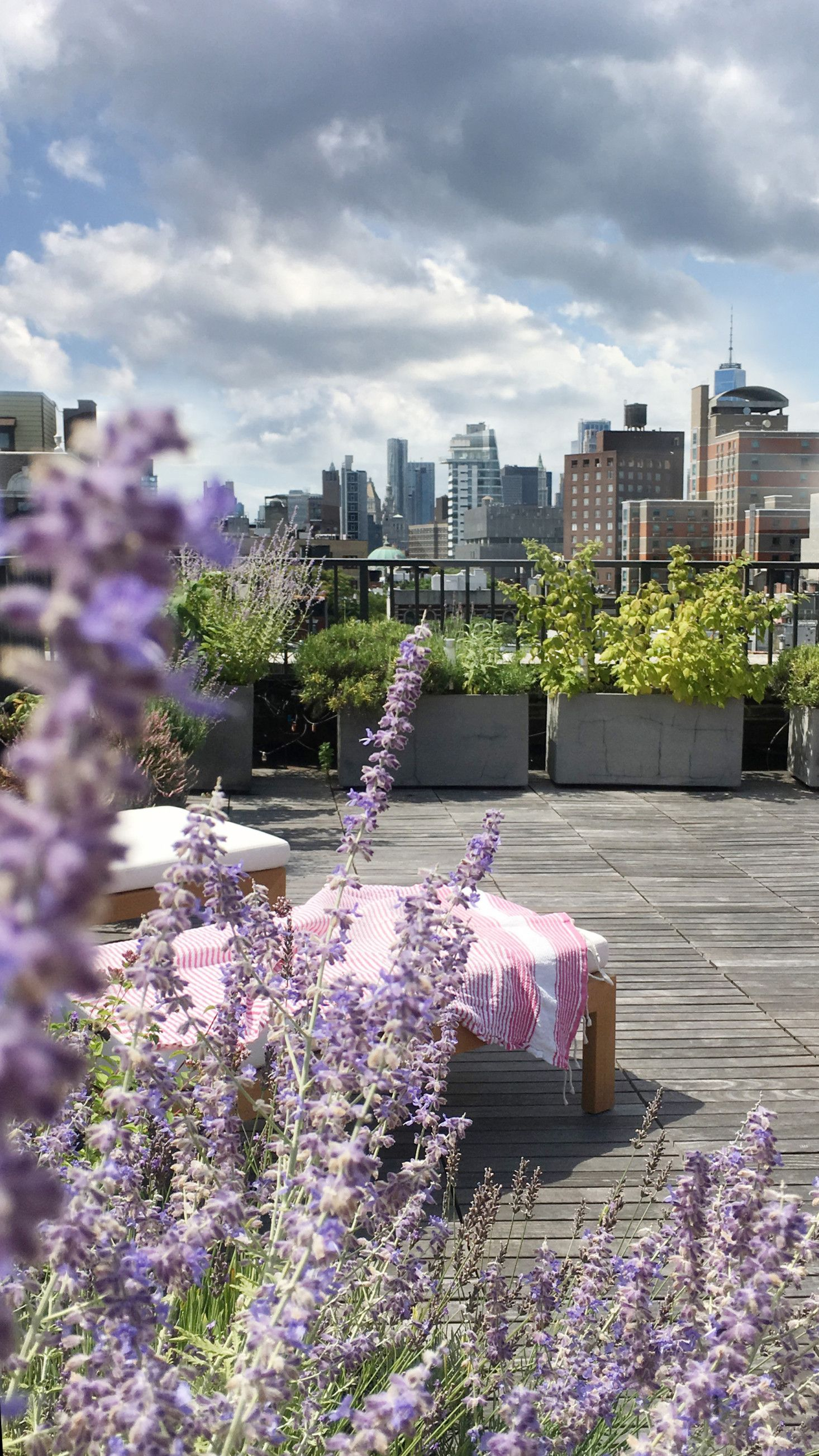 A Pink Roof Garden In Manhattan At Home With Designer Magdalena