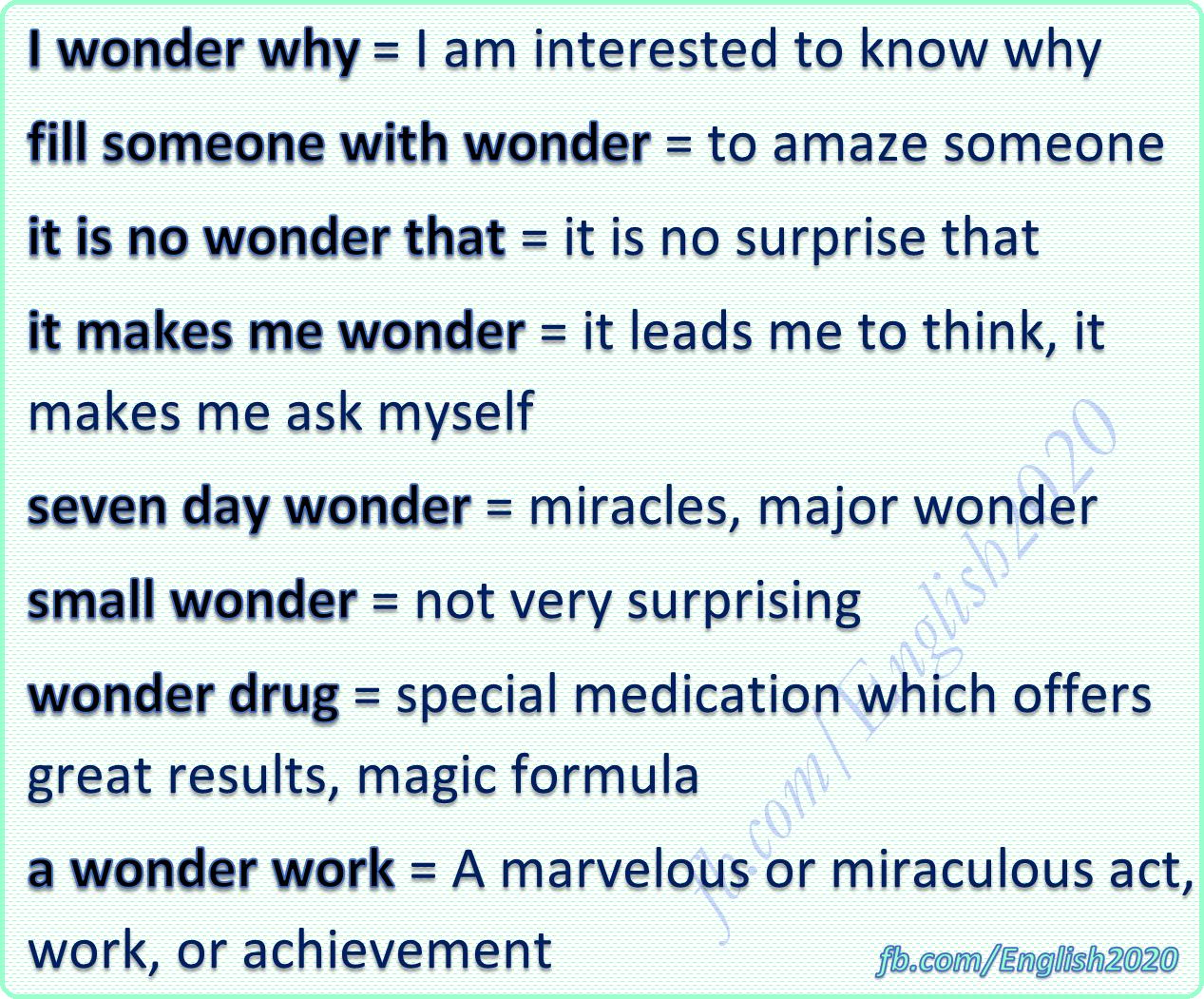 Vocabulary Wonder English Phrases English Language Learning New Words In English [ 1051 x 1267 Pixel ]