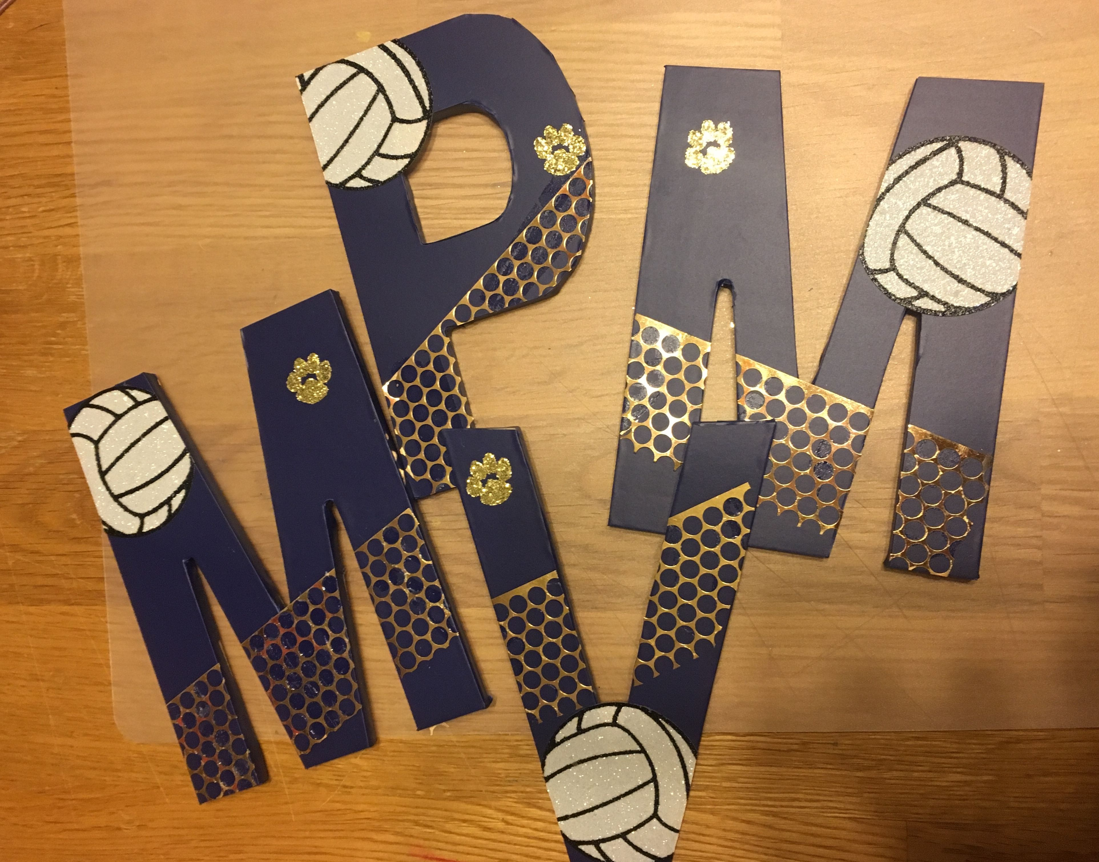 Volleyball Senior Night Gifts Volleyball Senior Night Gifts Volleyball Team Gifts Senior Night Gifts