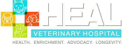 Your First Visit Hospital Health Veterinary Hospital Healing