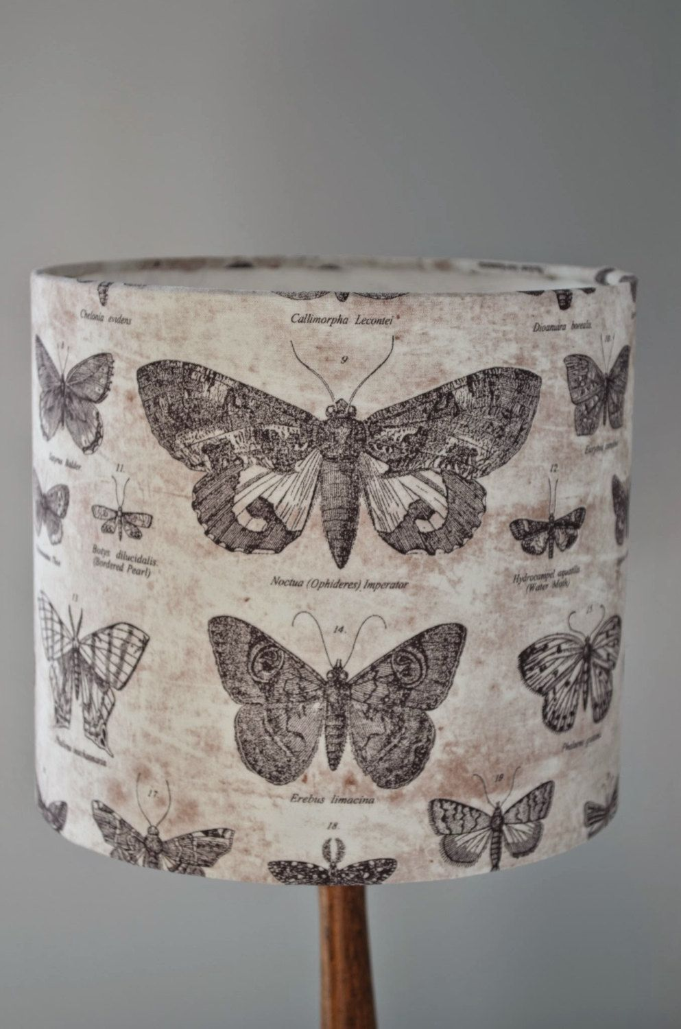 Handmade Lampshade Black Butterfly Cotton Fabric Drum Lamp shade by ShadowbrightLamps on Etsy