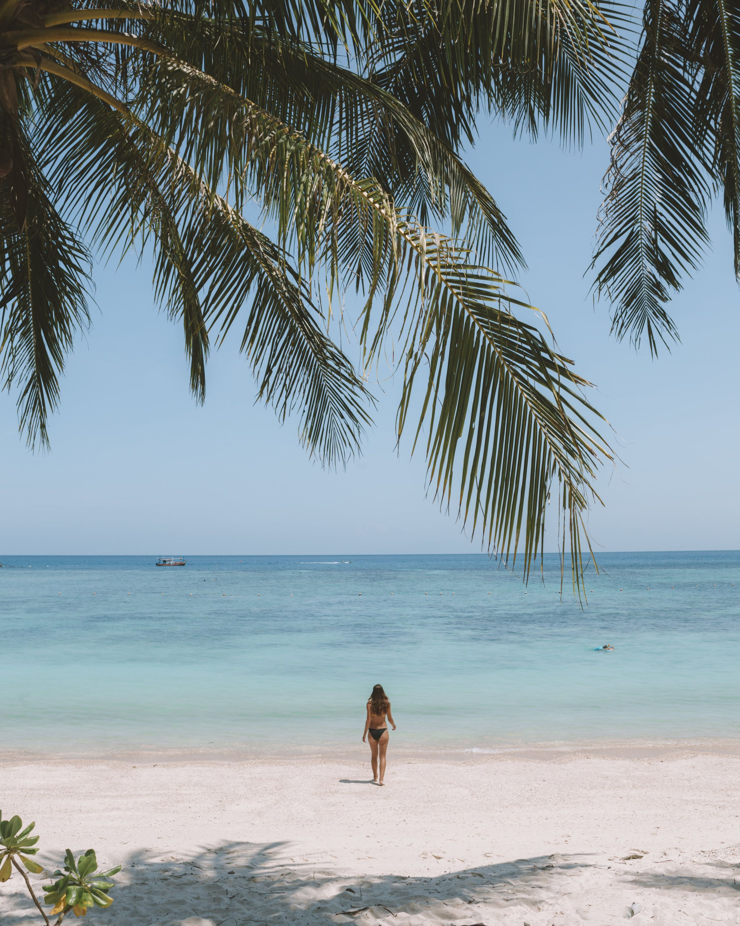 Desert Island Beach: A Week On The Idyllic Beaches Of Koh Tao (With Images