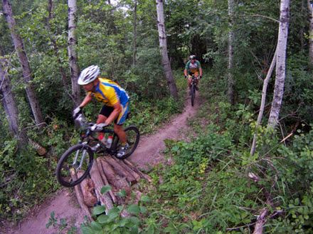 Single Track Mountain Bike Trail At Elm Creek Park Reserve This