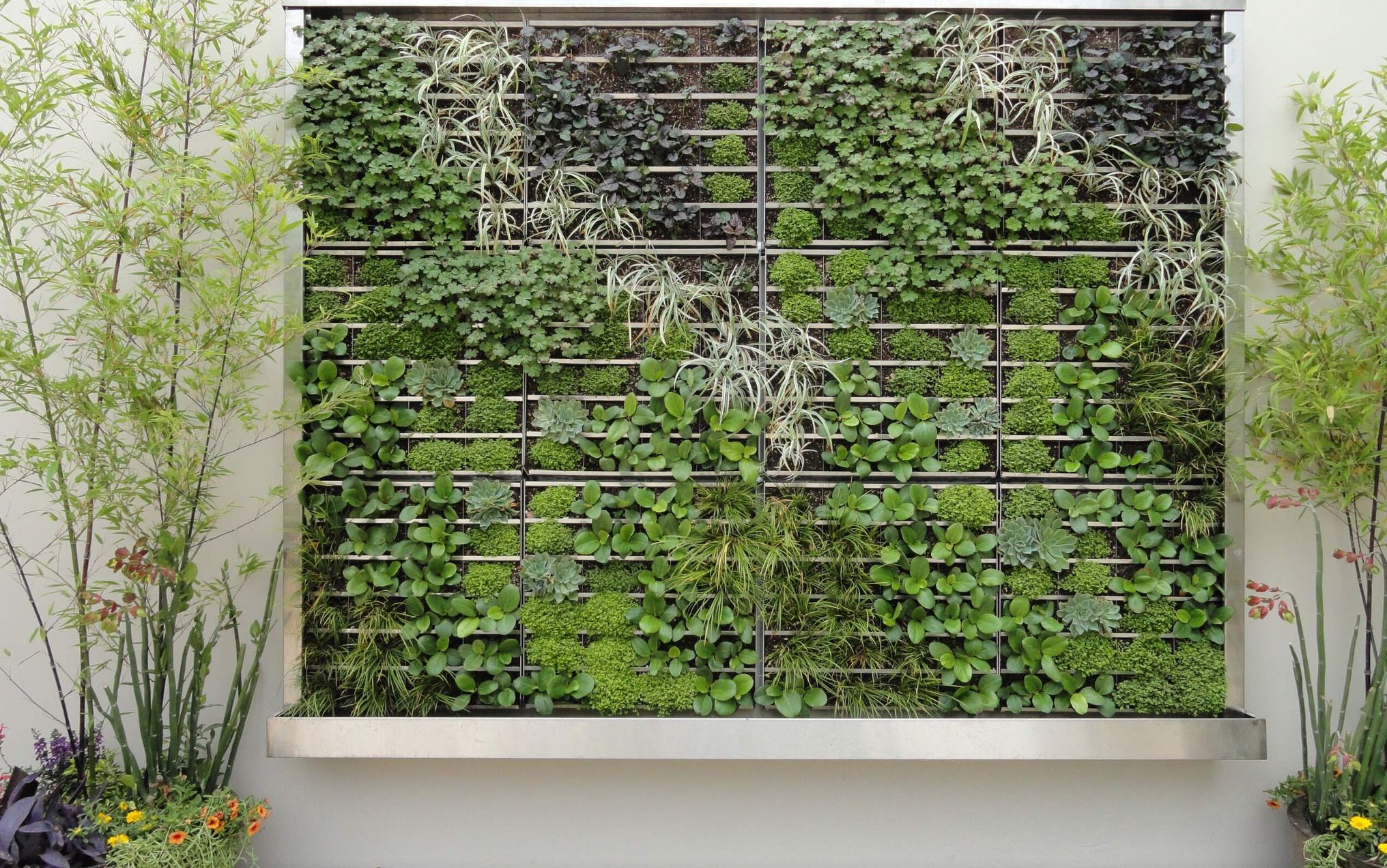 Graham Stanley and Assoc. | Vertical garden indoor ...