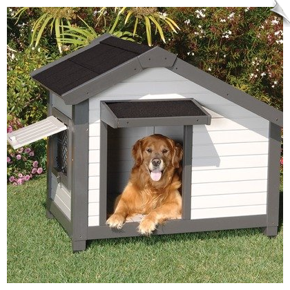 Need A New Dog House But Are On A Budget We Get It Cheap Outdoor Dog Houses That Will Not Break The Ban Cool Dog Houses Cheap Dog Houses Luxury Dog Kennels
