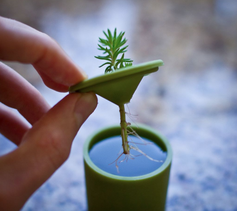 Spring is in the air!  Get your garden going using a 3D printed Rootcup & grow local.