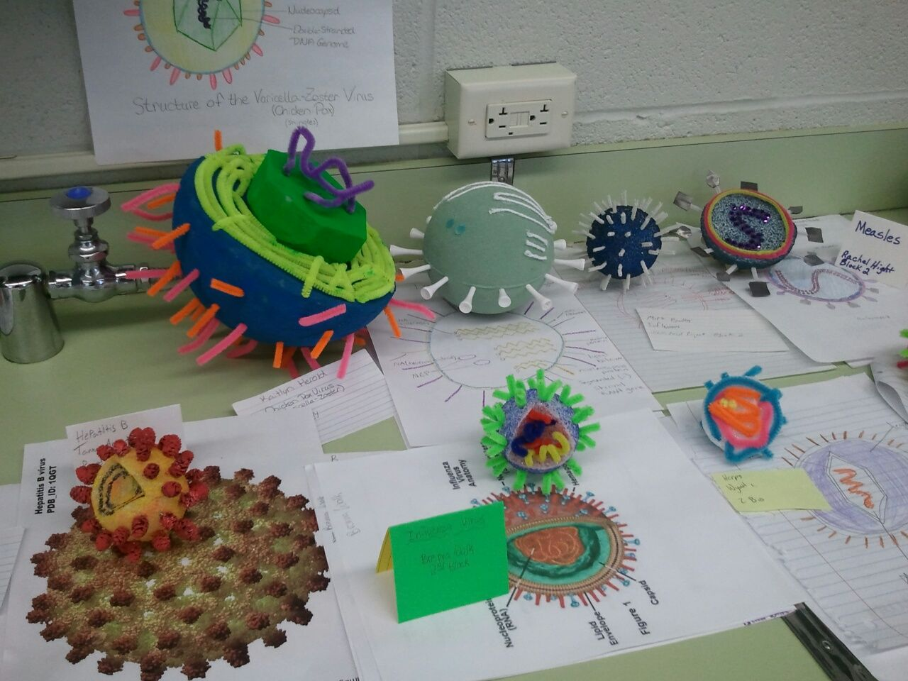 biology science projects Six biology (above) undergraduates spent the summer as interns at st michael's hospital in newark they shadowed their mentor jim fallon of the infectious disease department, observing appointments of patients on various hiv medications each student was assigned a different trial medication to monitor and tracked.