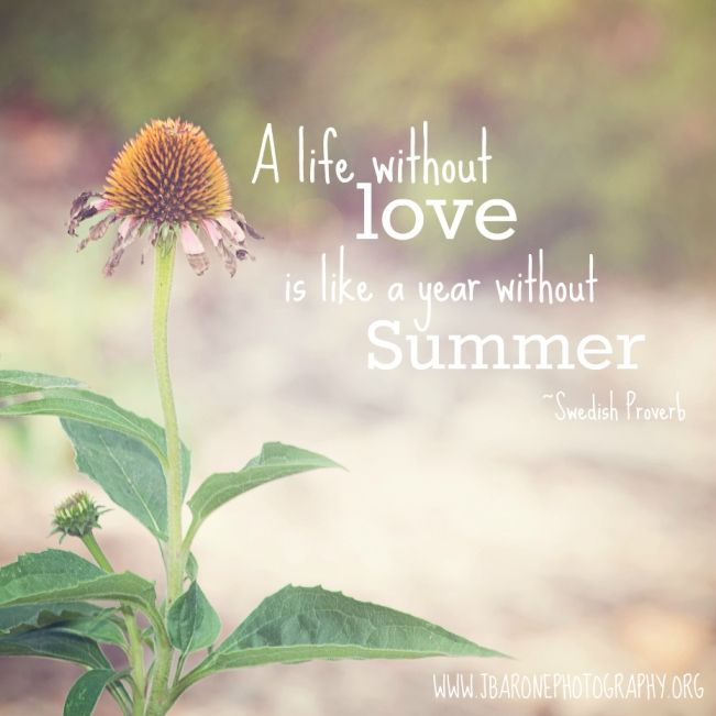 Quotes About Life Without Love: Life Without Love Is Like A Year Without Summer. Quote