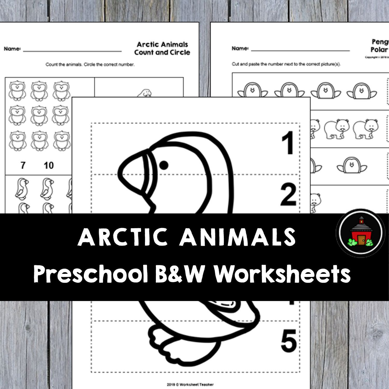 10 Arctic Animals Preschool Curriculum Activities