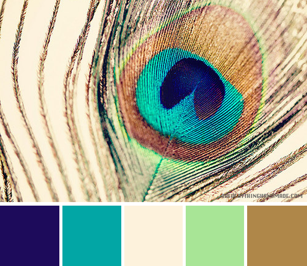 Color Palette Peacock Feather Peacock Feather Art Color Palette Feather Art #peacock #color #scheme #living #room