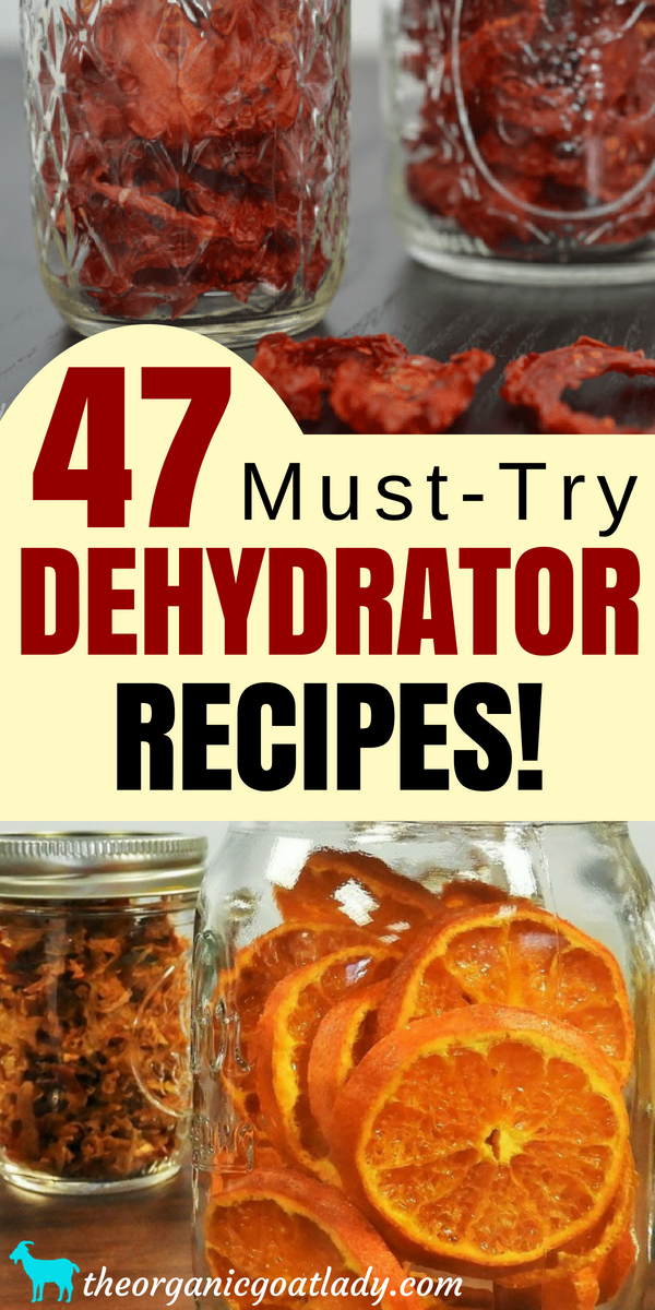47 Food Dehydrator Recipes Dehydrated Recipes Pinterest