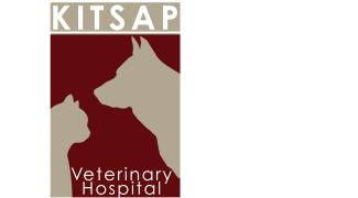 5 Conseils Pour Voyager Avec Votre Animal De Compagne Cat Insurance Pet Insurance Pets
