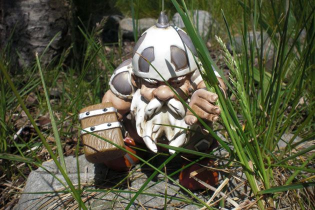 Viking Warrior Garden Gnomes Perfect For My New Garden. Dare The Rabbits To  Sneak In