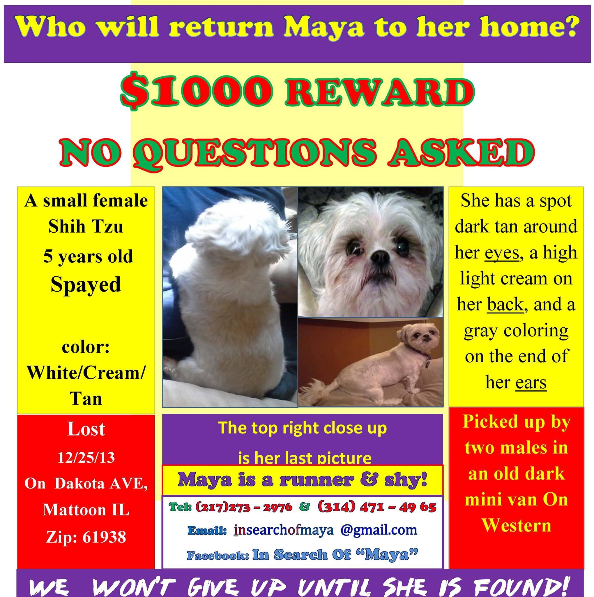 Angels Dear Friends Please Share Maya S Flyer Please Don T