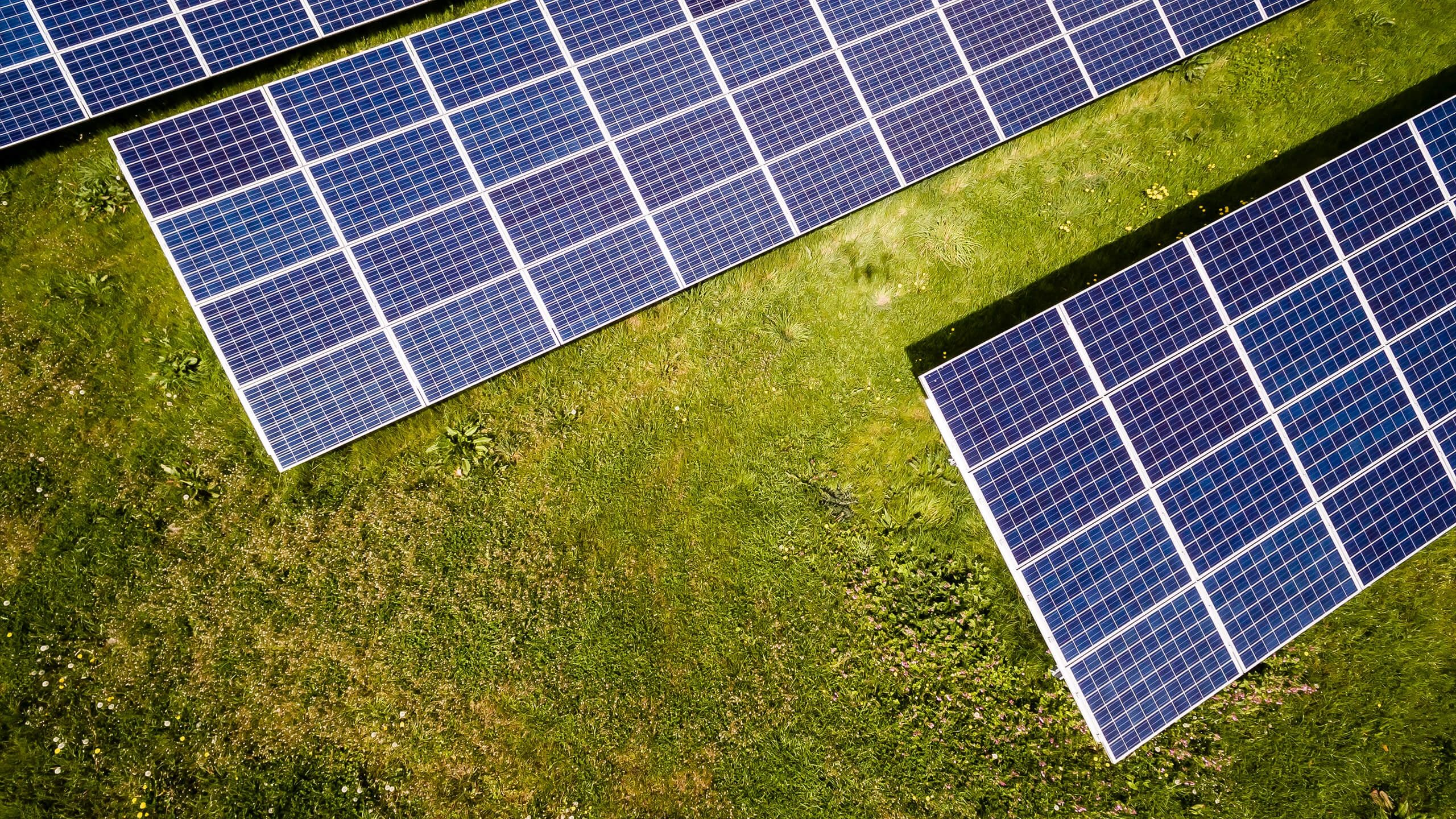 Inexpensive Solar Houston Tx Solar Energy Panels Solar Power Energy Solar Energy