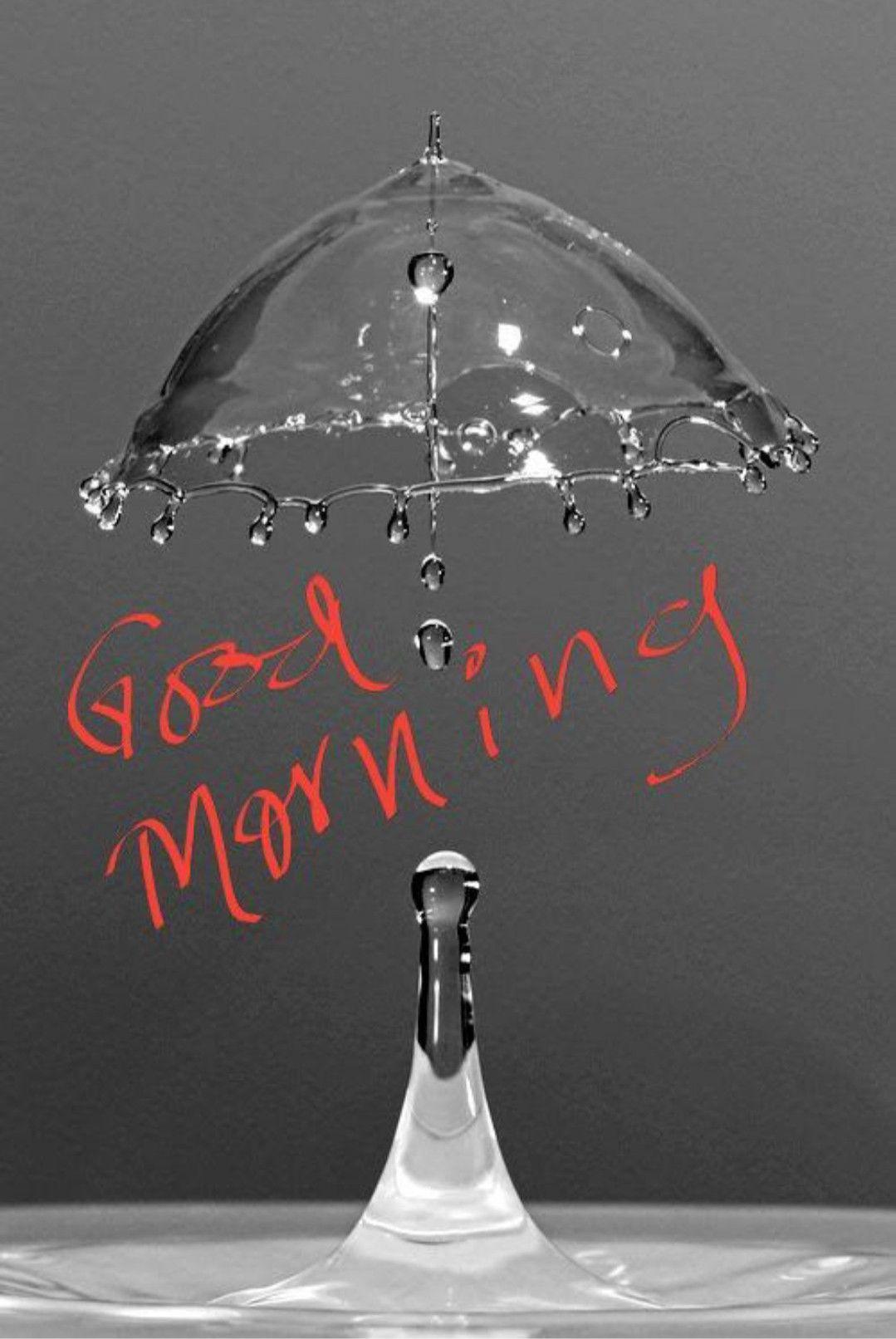 Good Morning Greetings Good morning greetings, Good
