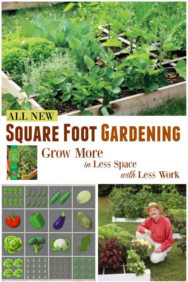 179fa80d8416b1d86e97a15ec8d106ef - Gro Well Square Foot Gardening Soil