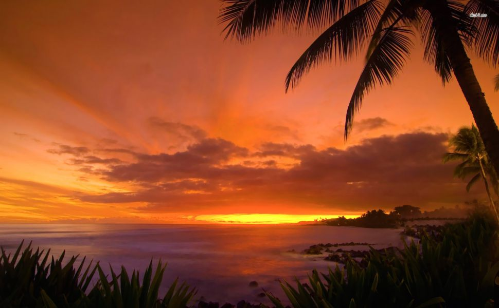 Hawaii Sunset Hd Wallpaper With Images Hawaii Beaches Sunset