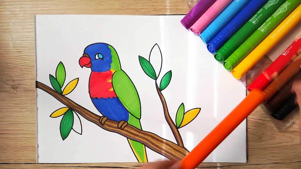 How To Draw A Parrot Rainbow Lorikeet Easy Drawing For Kids