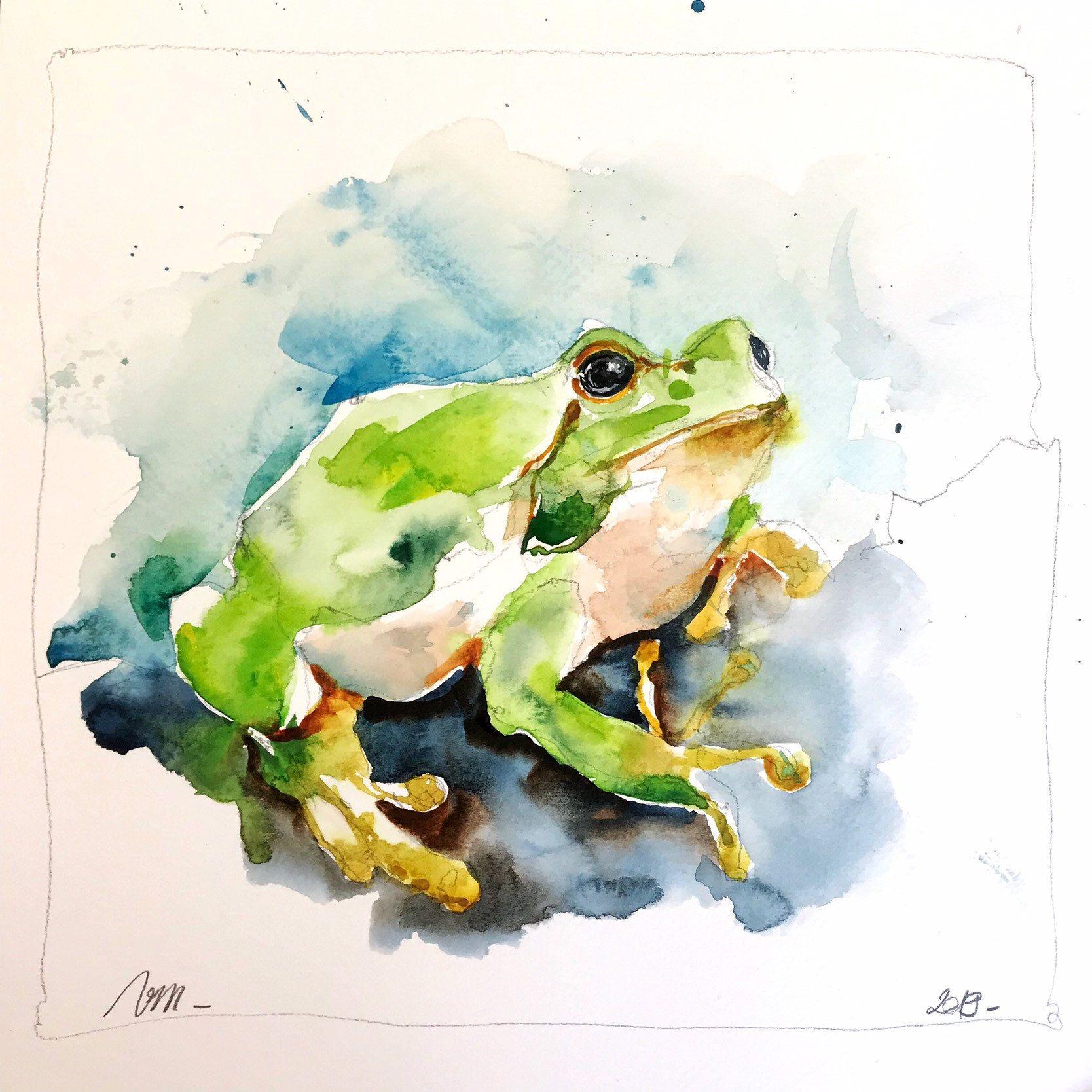 Original Watercolor Painting Robin Bird Illustration 7 4 5 X 7 4 5
