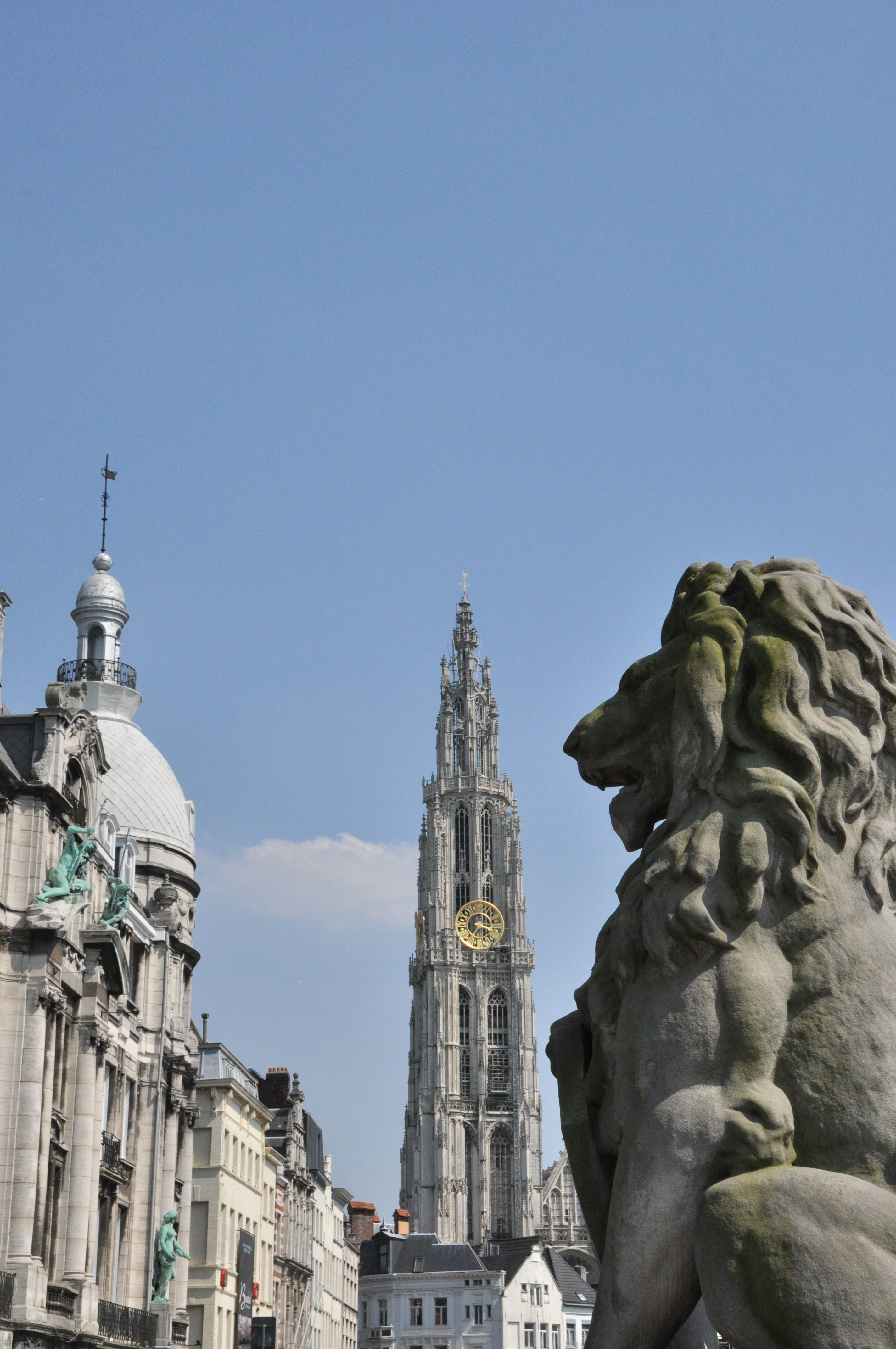 Tower of the cathedral of antwerp and the belgian lion symbol of tower of the cathedral of antwerp and the belgian lion symbol of belgium ever since biocorpaavc Choice Image