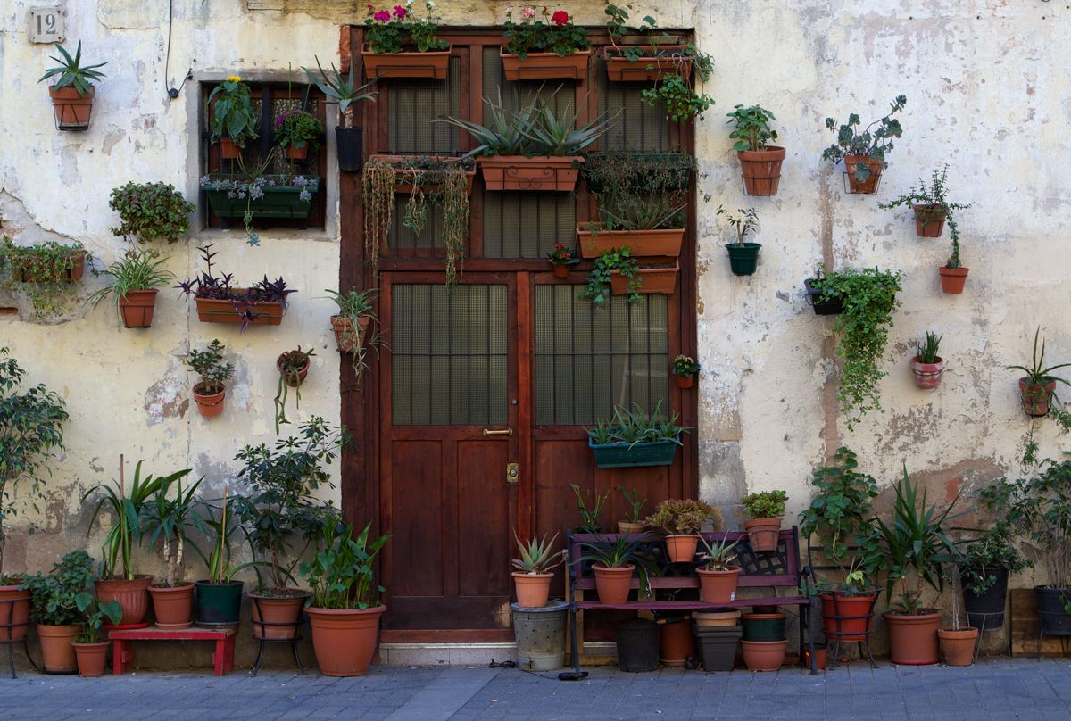 A doorway full of planters in Barcelona, posted by Emily