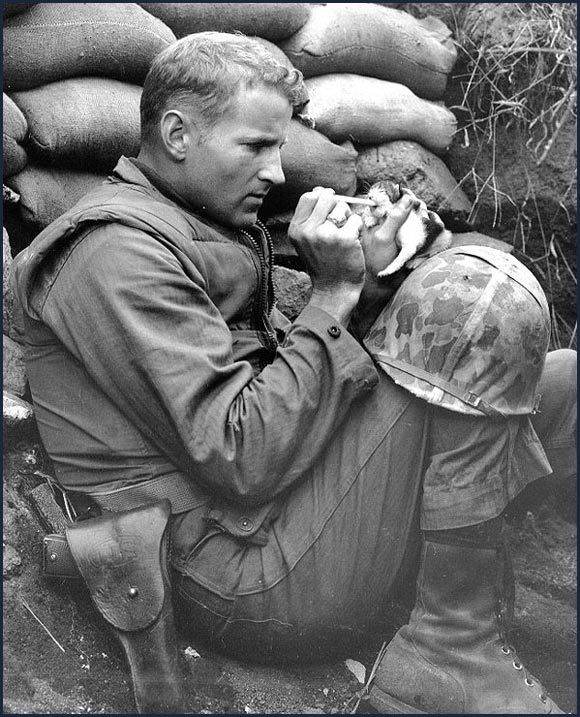 Solider nursing an orphan kitten back to health during the