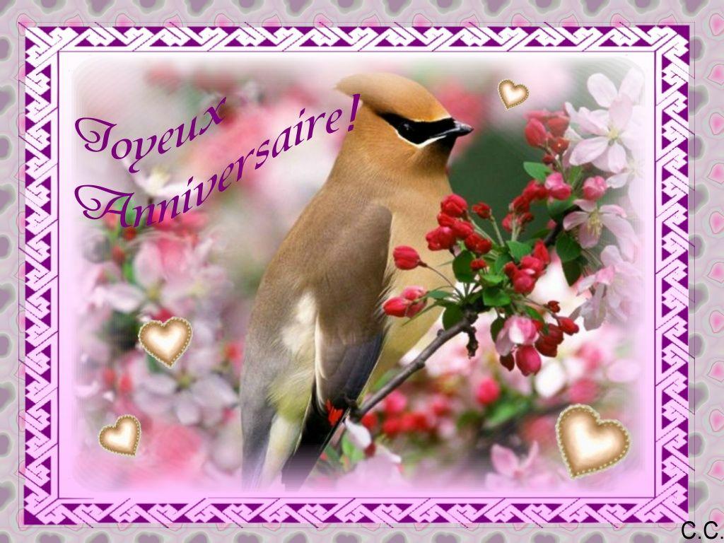 Bel Oiseau Perche Sur Des Fleurs Joyeux Anniversaire French