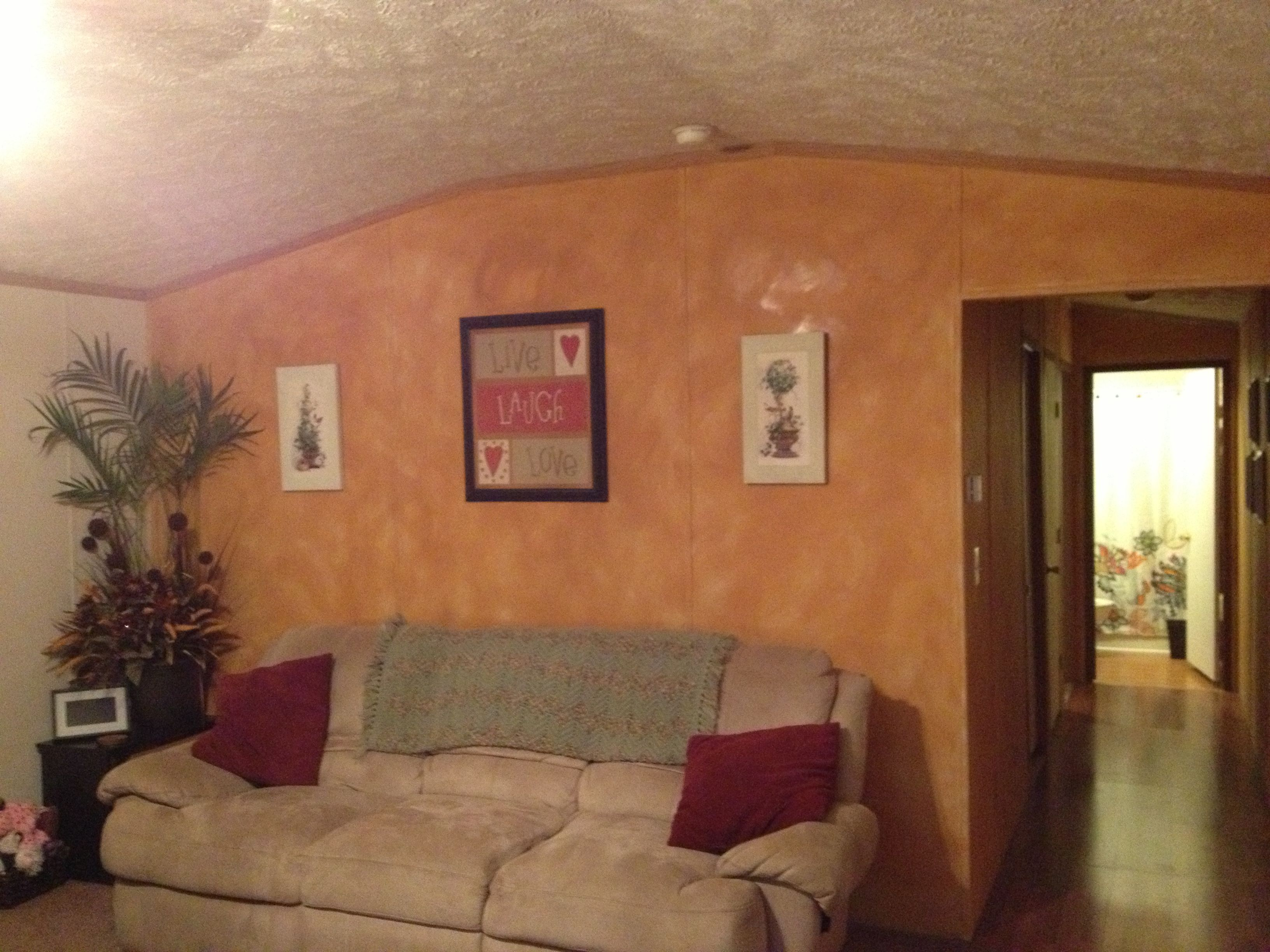 Color Wash Accent Wall In Living Room Mobile Homes