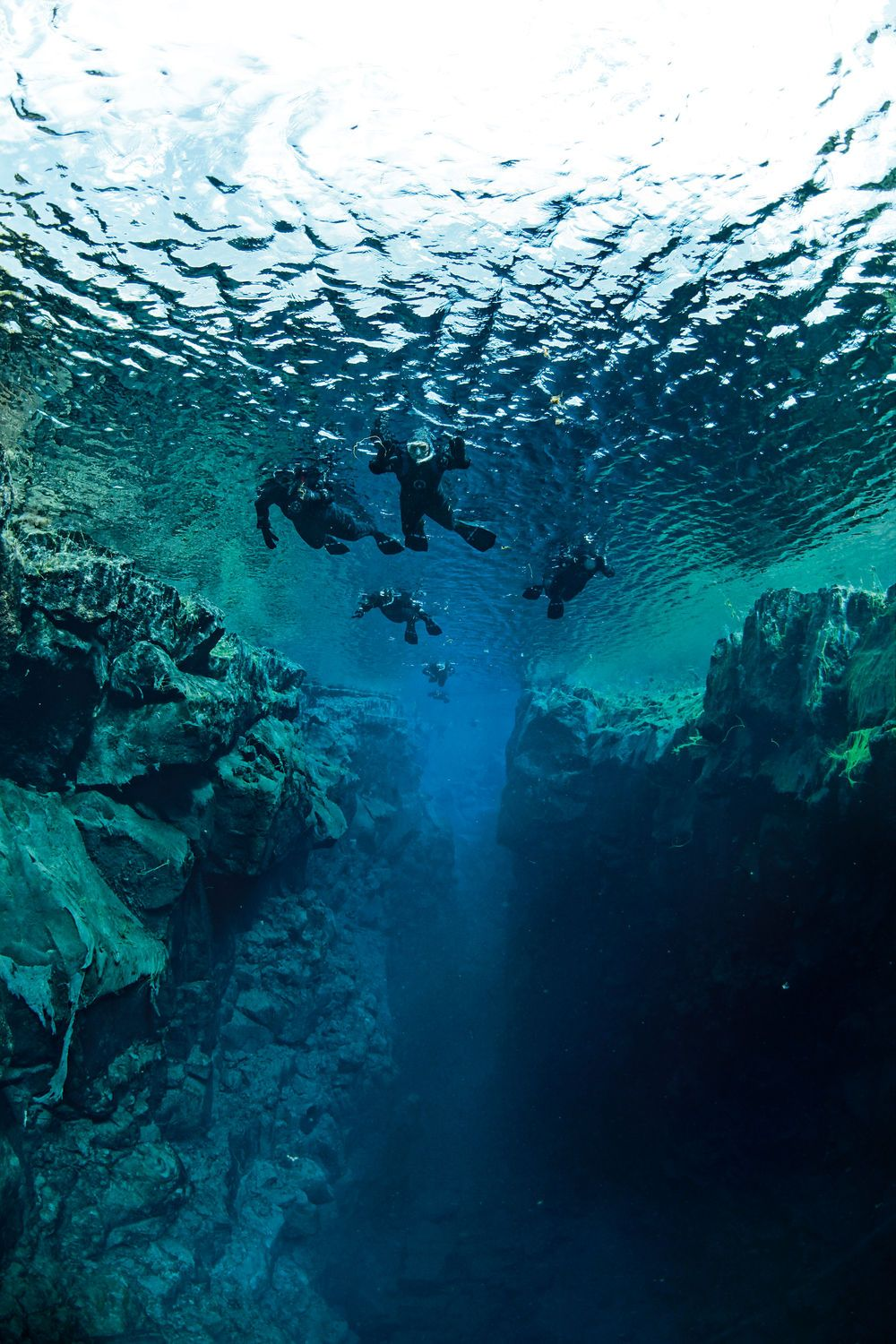 The 25 Best Freshwater Dive Sites