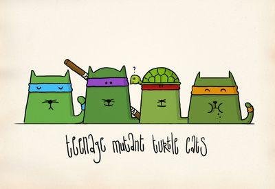 Teenage Mutant Ninja Cats!!