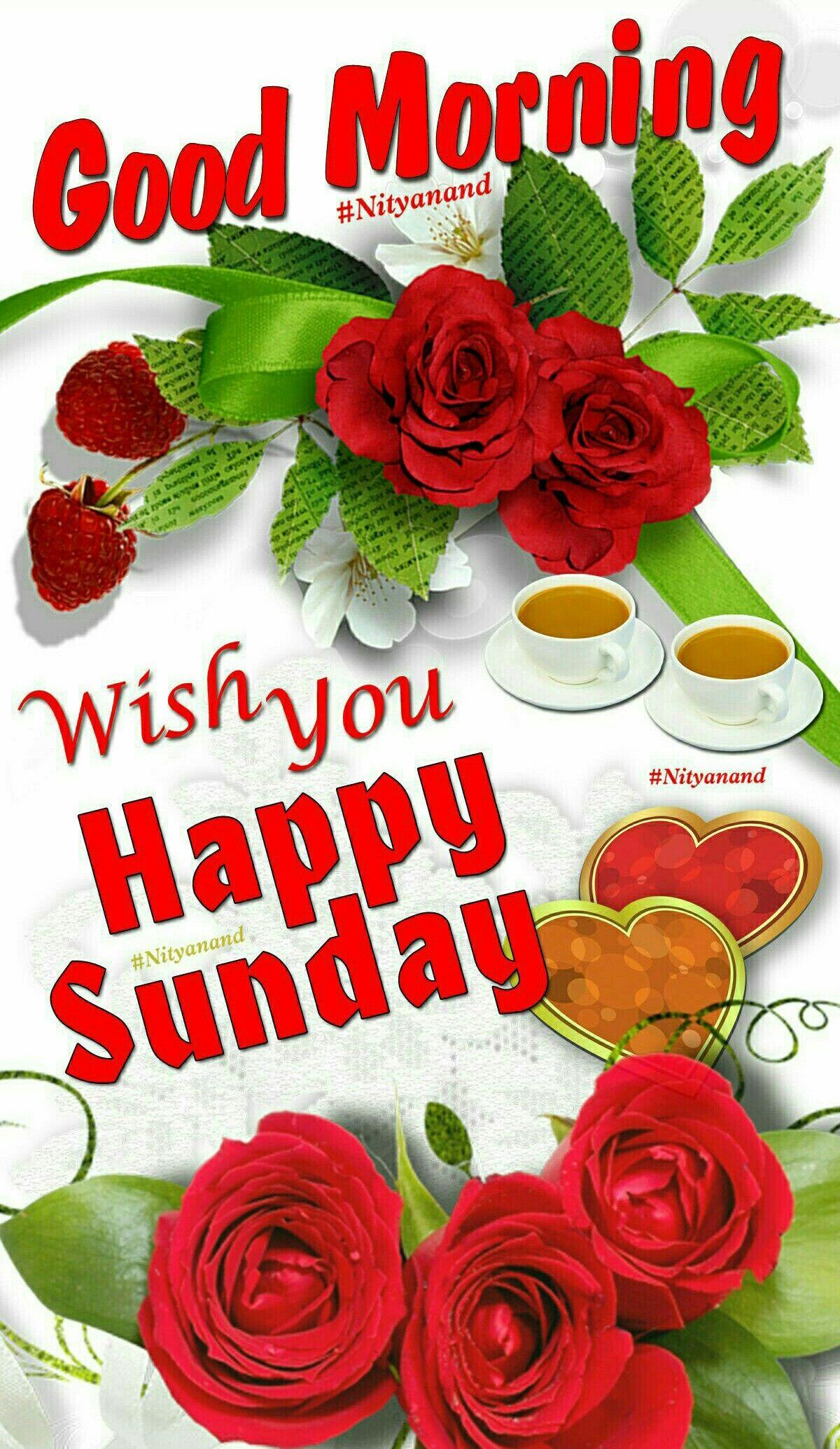 Good Morning Happy Sunday Images