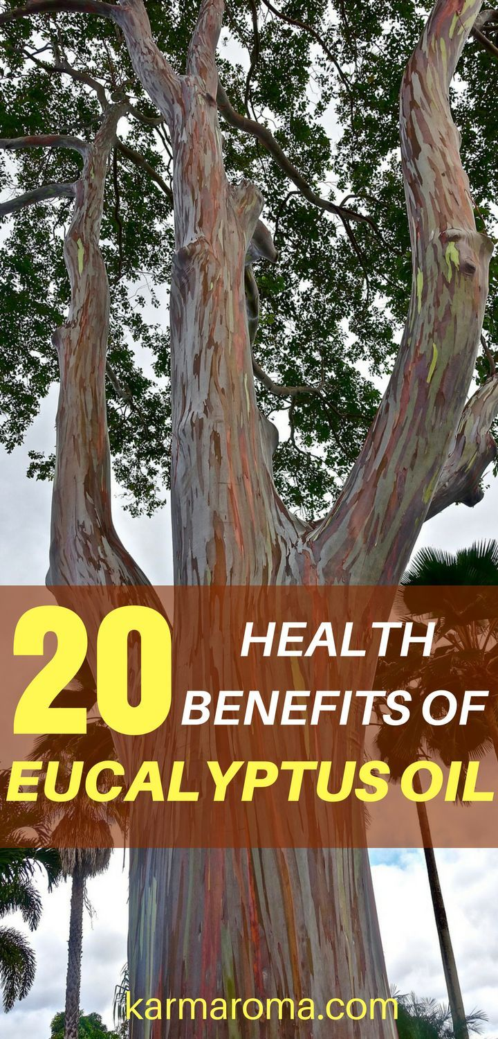 Eucalyptus Oil Is The Generic Name For Distilled Oil From The Leaf Of Eucalyptus A Genus O Natural Healing Herbs Natural Healing Remedies Natural Healing Oils