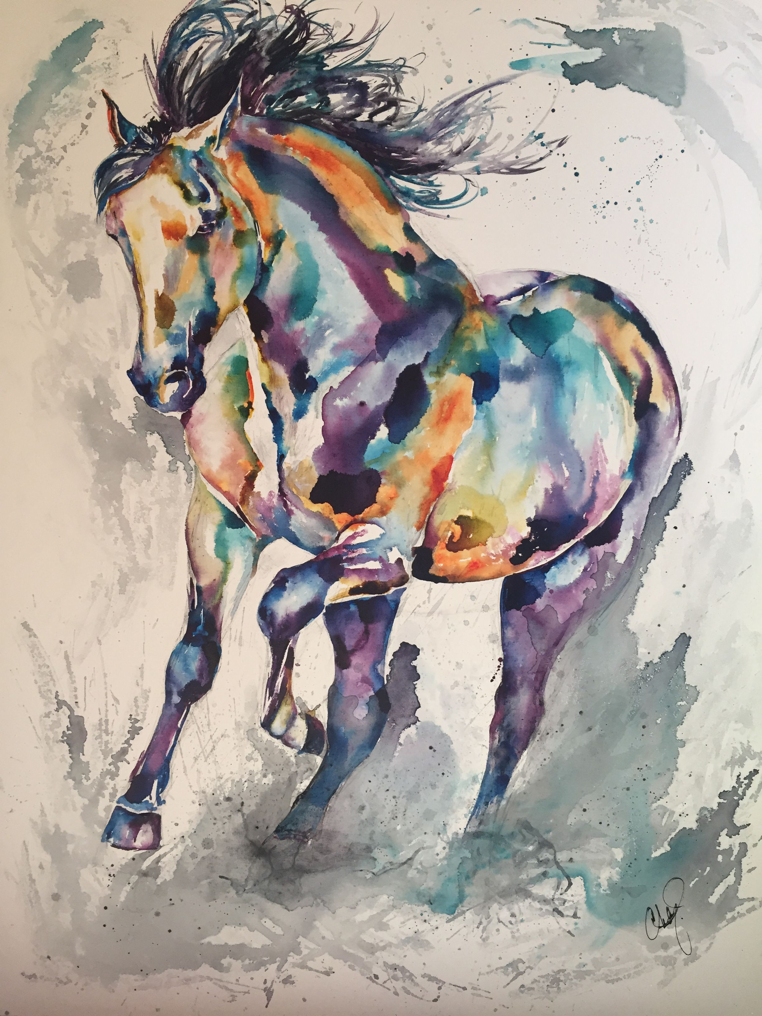 Andalusian Horse Aquarelle De Christy Freeman Horse Art
