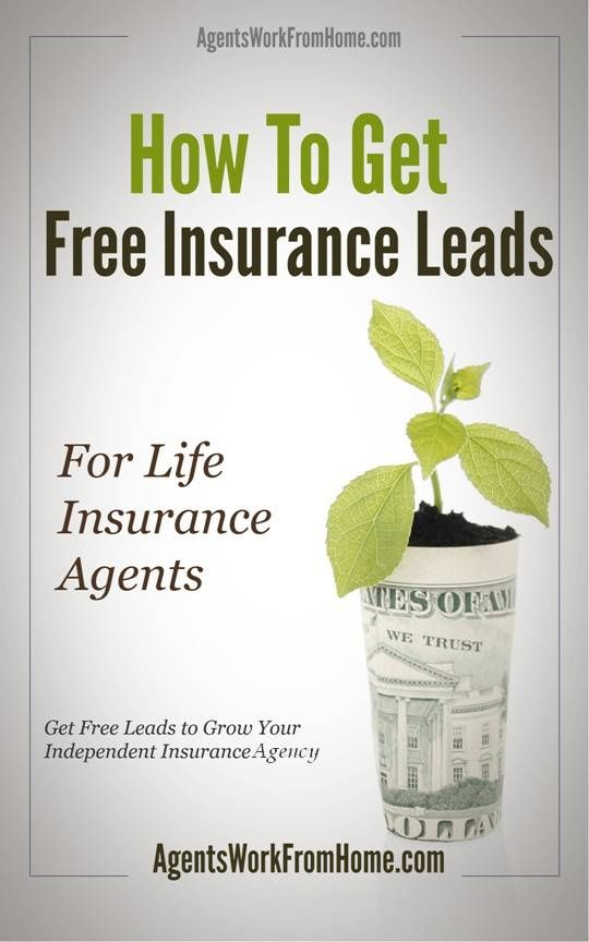 For Insurance Agents How To Get Free Exclusive Insurance Leads To