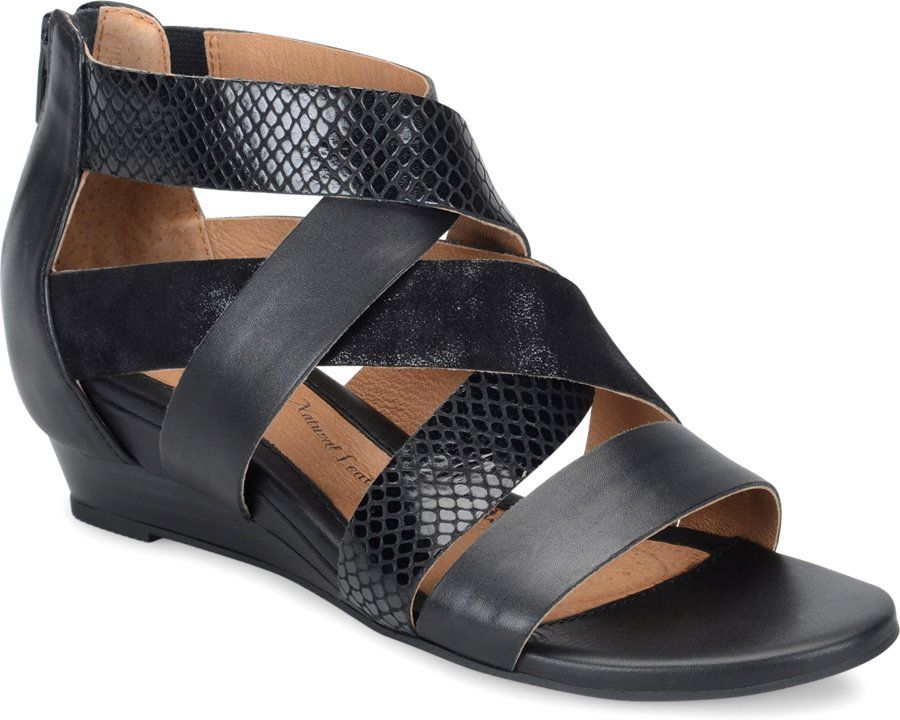 99ca5272ff Sofft Rosaria in Black - Sofft Womens Sandals on Shoeline.com ...