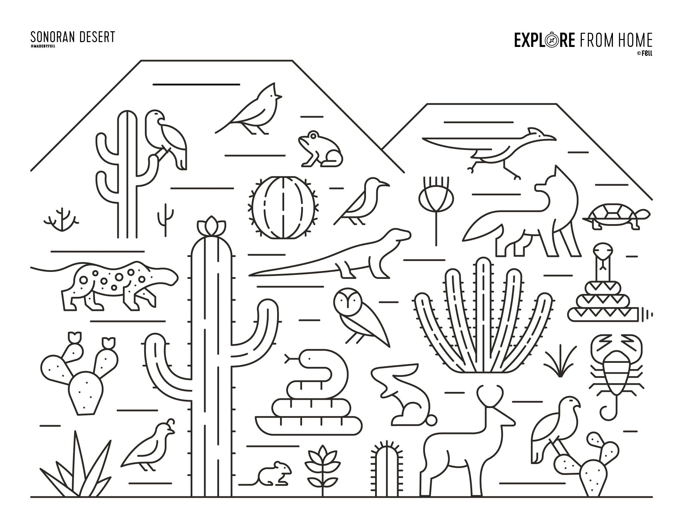 Biomes Sonoran Desert Coloring Page Coloring Pages Free Printable Coloring Pages Fruit Coloring Pages [ 1800 x 2329 Pixel ]