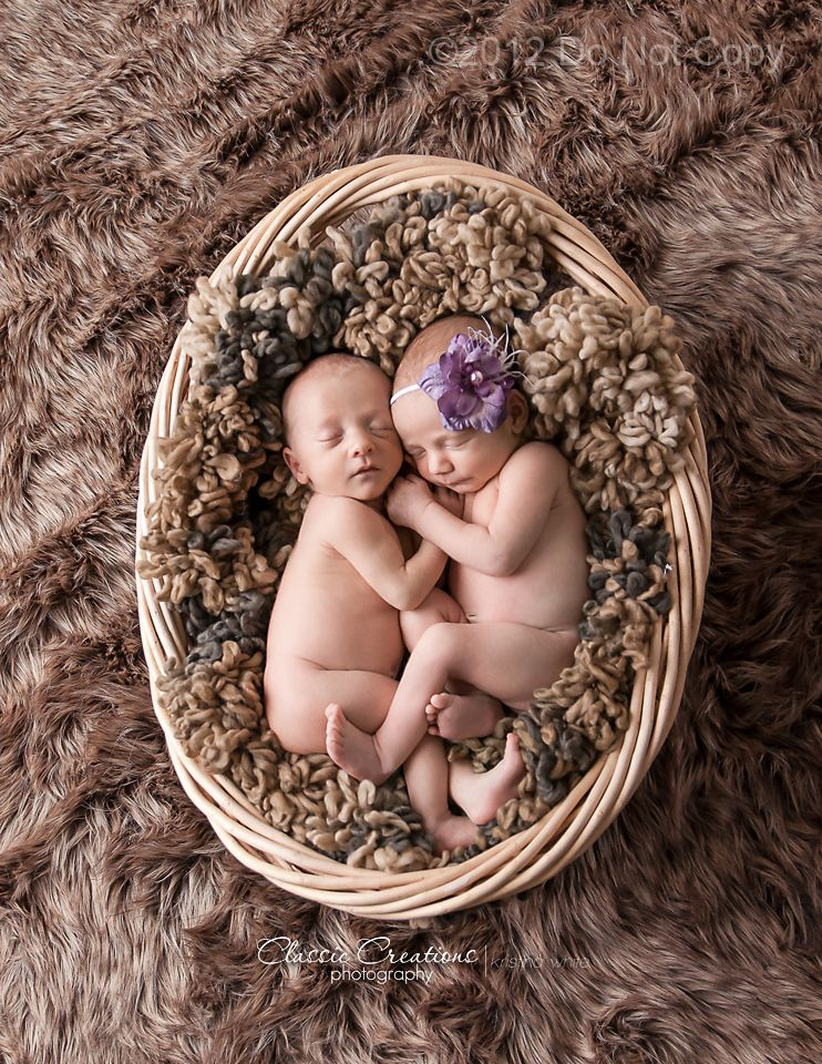 Classic creations photography twins in the studio clarksville tn twin newborn