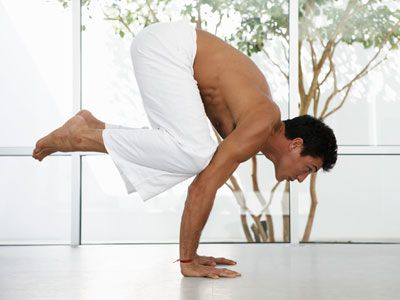 ashtanga yoga the yoga of eight limbs  yoga guide yoga