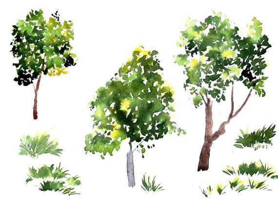Green Tree And Grass Clipart Hand Painted Trees By Rasvetadigital
