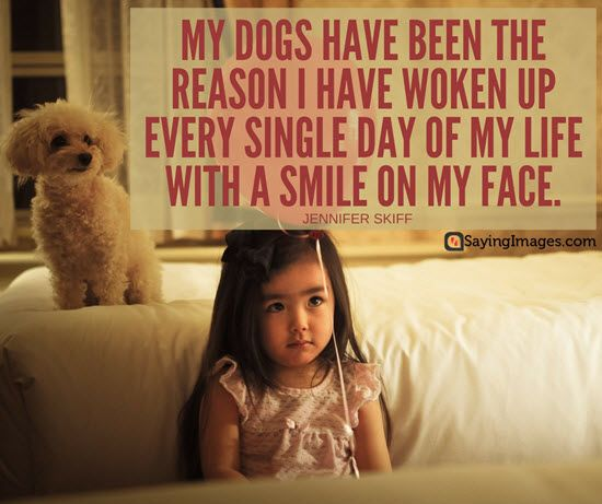 50 Dog Quotes For People Who Love Dogs Sayingimages Com Dog Quotes Dog Quotes Funny Dog Love